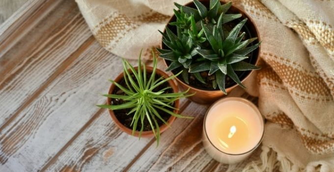 Creating Candle Making Scent With Fragrance Oils